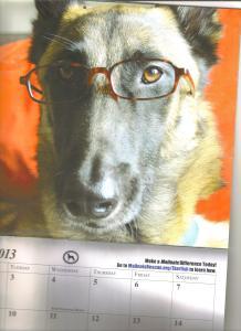 Odin, from the ABMR calendar